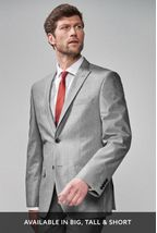 Light Grey Regular Fit Suit: Jacket
