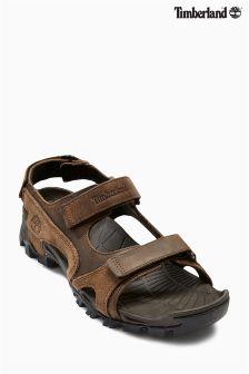 Brown Timberland® Cogdon Sandal