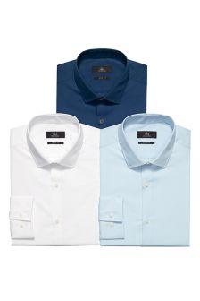 Blue/White Shirts Three Pack