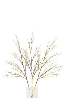 Set Of 3 Forsythia Twigs