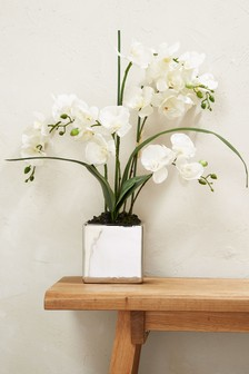 Large Real Touch Orchid In A Silver Pot