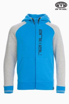 Animal Humming Malibu Blue And Grey Full Zip Hoody