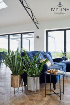 Skechers® Black Expected Gomel Slip-On Shoe