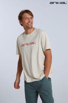 Jelly Belly Bean Boozled Tub