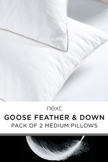 Set of 2 Medium Goose And Down Pillows