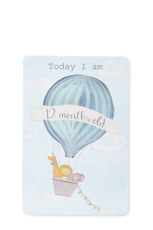 Set of 24 Baby's First Year Milestone Cards