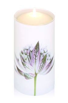 Pink Pepper And Fig Pillar Candle