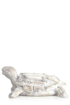 White Driftwood Effect Turtle