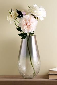 Large Crackle Ombre Vase