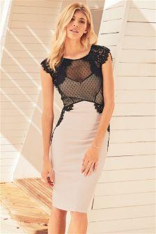 Lace Trim Bodycon Dress