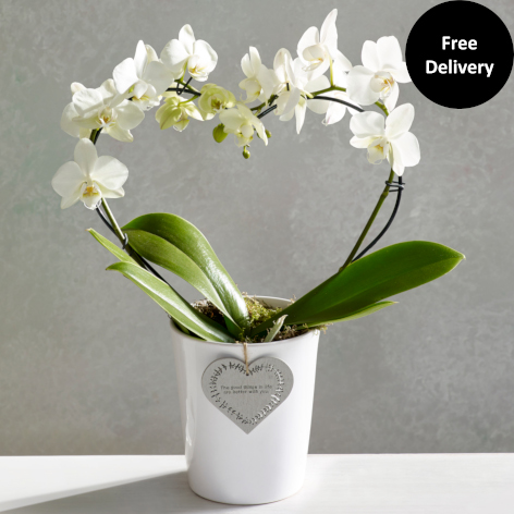 Bouquet Of The Month Next Flowers Uk