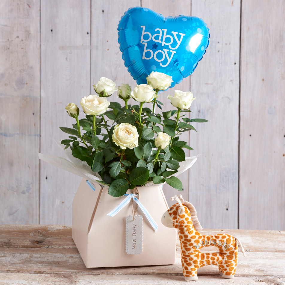 Next flowers and gift cards delivered next day baby boy gift baby boy gift negle Choice Image